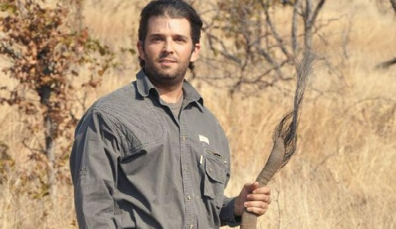 Donald Trump Jr.'s kills an African elephant and cuts off the tail to show off